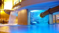 The notorious Golden Nugget pool is now The Tank – a $30 million complex complete with a shark tank, a 3-story waterslide and thirteen private cabanas. The Tank Get up […]